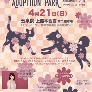保護犬猫の楽しい譲渡会イベント