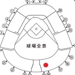 送料無料 5/10 阪神 vs 中日 レフト指定席 6連番