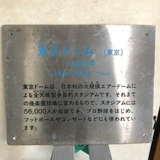 東京ドーム好きな方に!