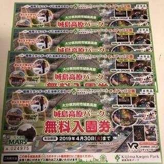 城島高原パーク 入園券 4枚