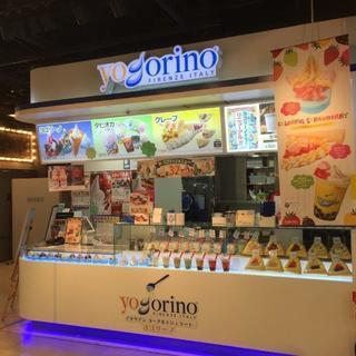 人気のタピオカとイタリアンジェラートのお店 yogorino!