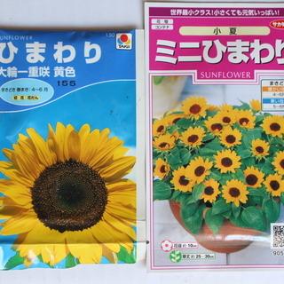 花の種/葉物野菜の種(使い残し)