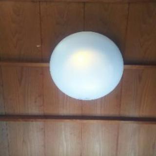 徳島照明交換しています、スイッチ、ブレーカー等修理
