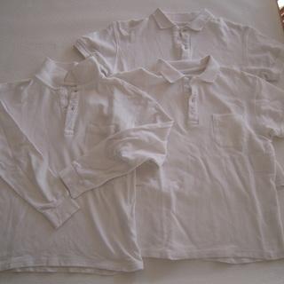 白 半袖、長袖ポロシャツ