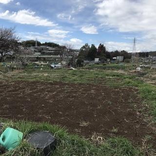家庭菜園はじめてみませんか? シェア畑 - 横浜市