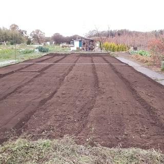 初心者も大歓迎!広めな区画の畑をお貸しします♪(貸し畑/貸し農園...