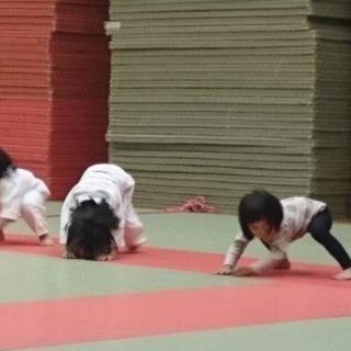 少年柔道〜安全 安心 教育〜白根柔道連盟 鳳雛塾