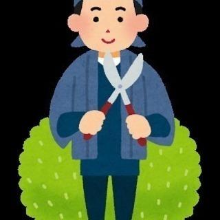 初めまして!福岡で造園業をしています!