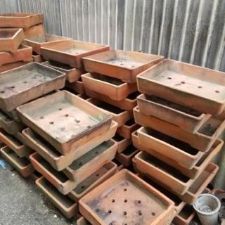 盆栽鉢 植木鉢 無料