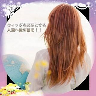 假髮剪ウィッグカットします。名古屋市中村区、予約制個室サロンのサ...