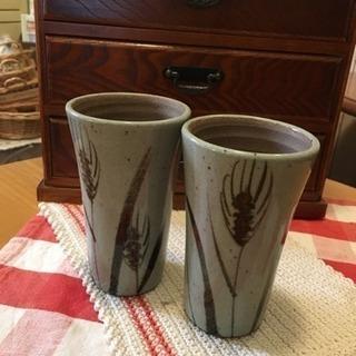 焼き物ビールグラス