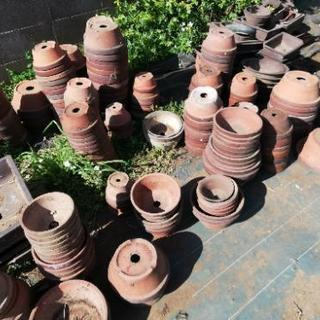 植木鉢差し上げます。 園芸用品  大量