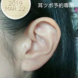 耳つぼダイエット第2期生 募集