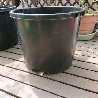 残り3個 大型植木鉢 プランター 果樹・庭木用NPポット