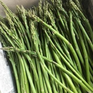 野菜   ふぞろい 炒め物用 アスパラ  1束 5束限定