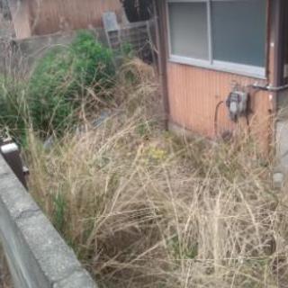 須惠町、平屋の裏庭の草刈り。