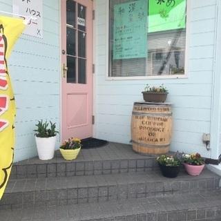 和漢おばさんの店、カットハウスマリー