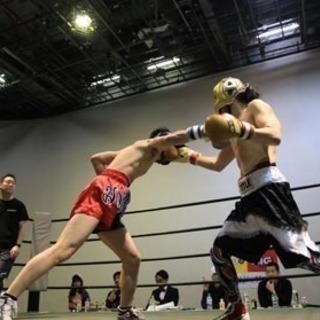 ボクシングの練習のメンバー募集です。