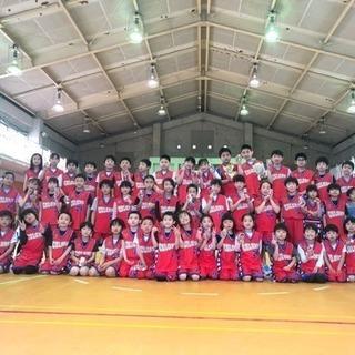 【新松戸教室 】バスケットボールスクールカラーズ