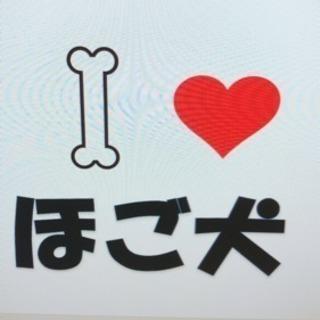 【ほご犬と命の重み】啓発活動 - 和泉市