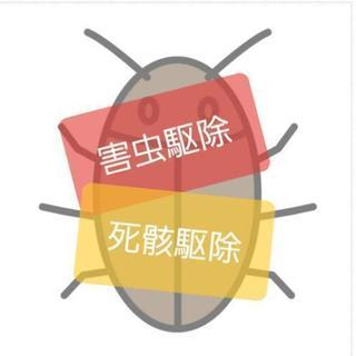 害虫駆除 ゴキブリ 動物の死骸撤去 退治 夜間対応