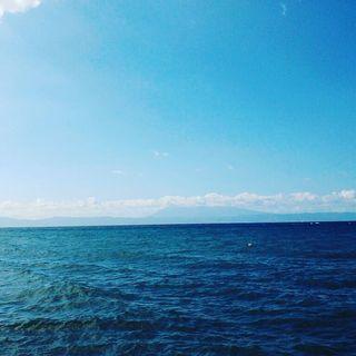 セブ島 のこと、きいてみませんか?