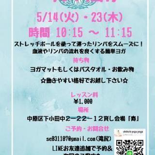 5/14,23 武蔵中原ヨガ教室 お子様連れ🆗