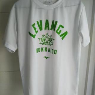 レバンガTシャツ