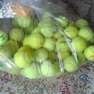 硬式テニスボール