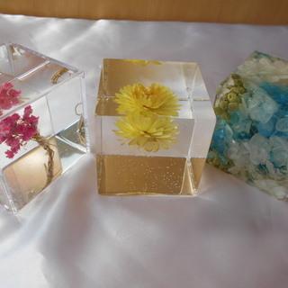 透明キューブ、固めるハーバリウムを体験しませんか?