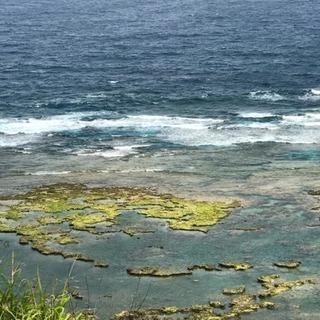 世界最古最先端だった古代日本の謎が沖縄から見えてくる。水族館や首里城の次の沖縄を探知する、心と知性の為のワクワク・ドキドキ散策ツアー。 - 教室・スクール