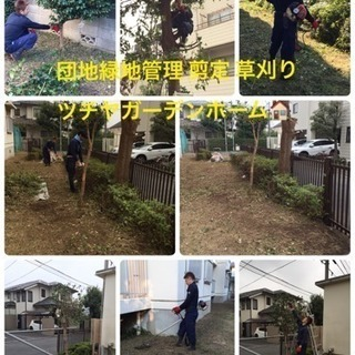 アパート マンション 団地の芝刈り 草刈 剪定ならお任せ下さい。...