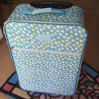 布製のキャリーバッグ
