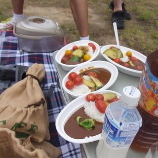 夏野菜カレーマラニック