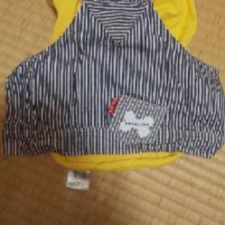 ☆値下げ☆犬の洋服(2着)