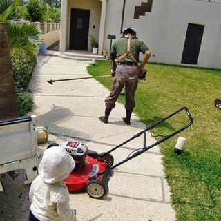 植木の剪定 草刈 伐採 アパート、駐車場草刈清掃定期管理 簡単な...
