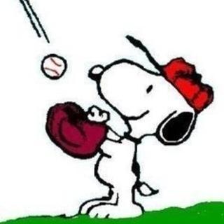 😆🌸初心者大歓迎 野球⚾️20代社会人メイン😆🌸