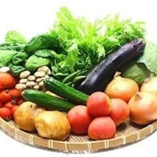九州産中心のお野菜セットをご自宅までお届けします!
