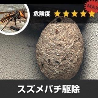 TBS・報道特集様に取材を受けた有資格企業です。害虫・害獣駆除!!再発保証のアフターサービスを無料で用意しております‼ 特殊清掃で使う薬品噴霧で巣ごと除菌・消臭・除去ができます!被害が拡大する前にご相談ください! ゴキブリ、ねずみ、スズメバチ、アリ、等の害虫・害獣駆除 - 害虫/害獣駆除