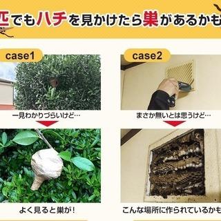 TBS・報道特集様に取材を受けた有資格企業です。害虫・害獣駆除!!再発保証のアフターサービスを無料で用意しております‼ 特殊清掃で使う薬品噴霧で巣ごと除菌・消臭・除去ができます!被害が拡大する前にご相談ください! ゴキブリ、ねずみ、スズメバチ、アリ、等の害虫・害獣駆除 - 地元のお店