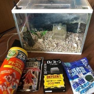金魚用水槽+付属品セット