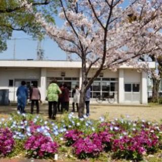 住之江区御崎のウクレレ教室です♪