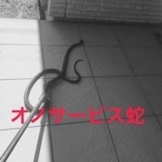 ゴキブリ、蜂の巣駆除、ヘビ、コウモリ、ネズミ、、 - 名古屋市