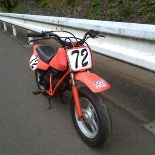 ホンダ QR50 キッズバイク