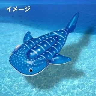 プールに海に★ジンベイザメのフロート/浮き輪