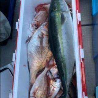魚釣りサークルメンバー募集中.•*¨*•.•*¨*•.¸¸