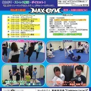 キックボクシング、柔術、MMA