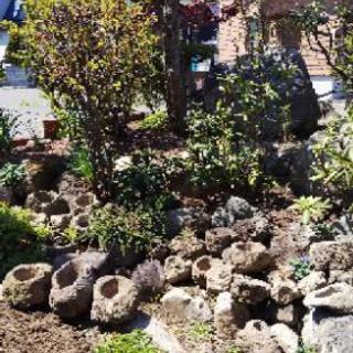 軽石の植木鉢