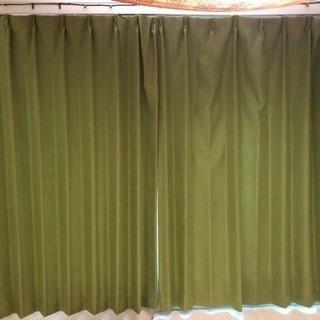 黄緑のカーテン (NITTORI)