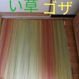 【未使用】い草のゴザ い草 ラグ